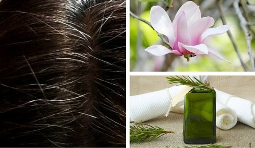Natürliche Färbemittel bei grauen Haaren