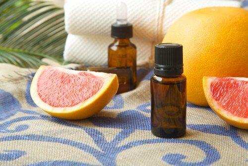 Grapefruitauszug gegen Schimmelpilz