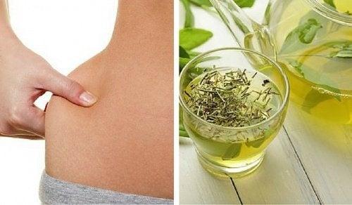 Wie viele Tassen grüner Tee pro Tag, um Gewicht zu verlieren