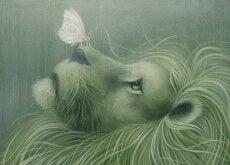 Löwe und Schmetterling als Symbol für emotionale Intelligenz