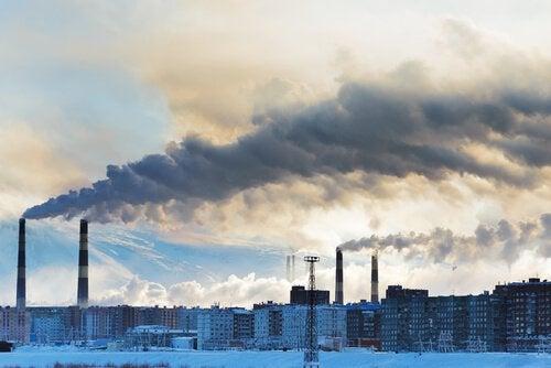 Umweltschadstoffen