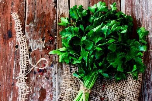 Petersilie: Küchenkraut und Heilmittel