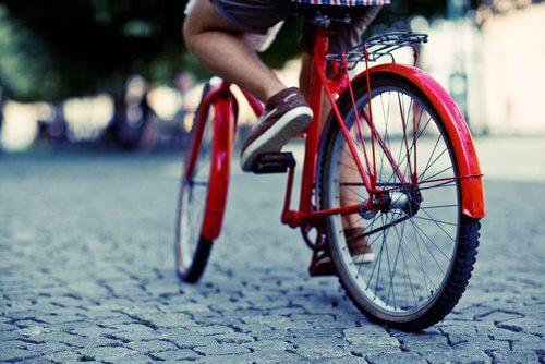 Kalorien verbrennen beim Radfahren