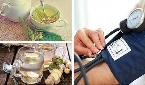 naturheilmittel gegen bluthochdruck