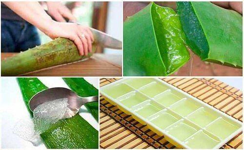 Wie kann man Aloe-Gel aufbewahren?