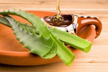 Aloe-Gel und Honig