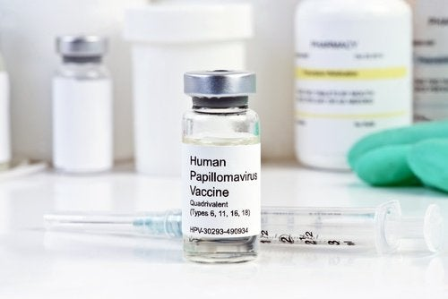 Papillomavirus kann zu Gebärmutterhalskrebs führen