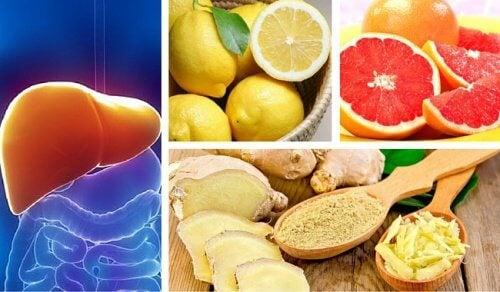 Leber- und Nierenreinigung mit Grapefruit, Zitone und Ingwer