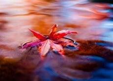 Das-Flow-Erleben-eine-wunderbare-Sichtweise-um-Stress-abzulegen