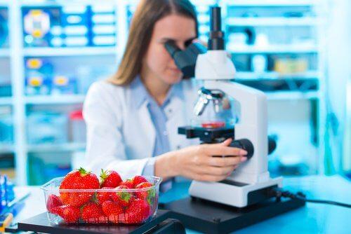 Frau am Mikroskop untersucht Pestizide