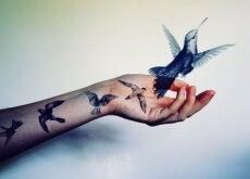 Frau mit Vogel in der Hand zeigt Intelligenz