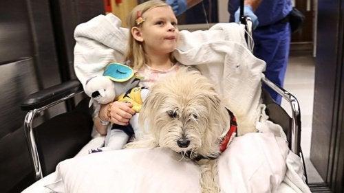 Krankenhaus, das Haustiere erlaubt, macht den Aufenthalt für die Patienten angenehmer