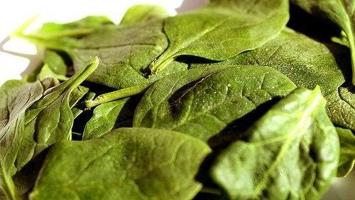 Hämoglobinspiegel durch Spinat verbessern