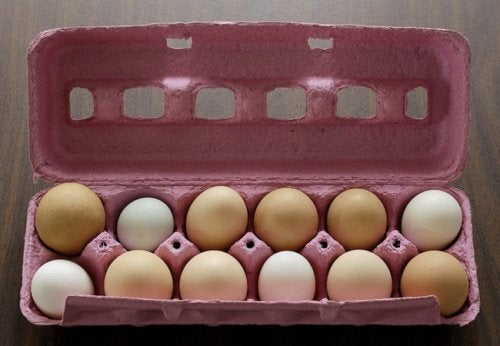 Eier nicht im Kühlschrank