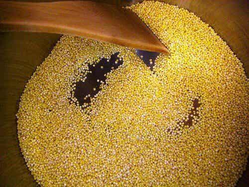 Hirse: Eigenschaften und Nutzen des alkalisierenden Getreides