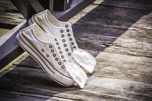 Zwiebel zur Reinigung von Schuhen