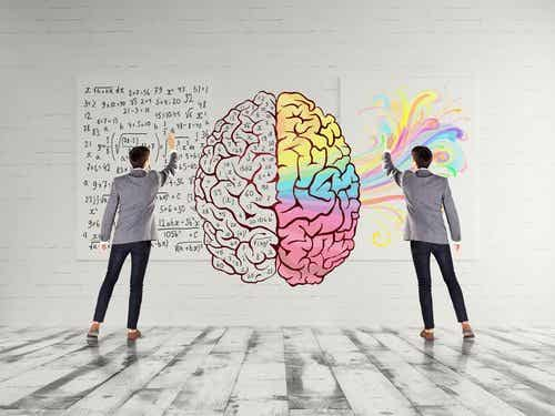 Warum dein Gehirn Bewegung mag