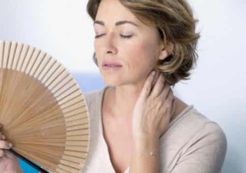 Was bestimmt den Beginn der Menopause?