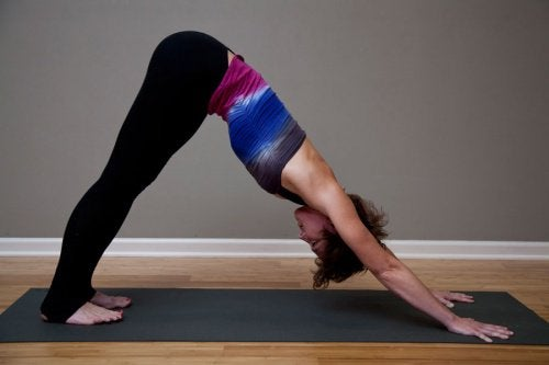 Yoga Hund Stellung