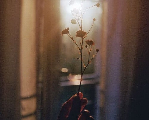 Blumen in der Hand symbolisieren Option