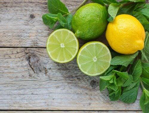 Reife und unreife Zitronen Nierensteine