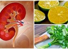 Zitronen-Petersilien-Saft-gegen-Nierensteine