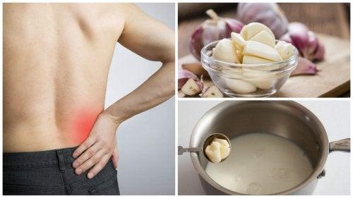 Wirksames Rezept gegen Ischiasschmerzen: Knoblauchmilch