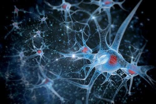 neuronen-in-unserem-handarbeiten