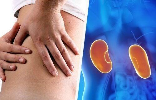 5 frühe Symptome von Nierenerkrankungen
