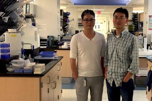 Forscher im Bereich Lungenkrebs