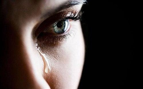 Kurioses über Tränen