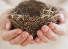 das-leere-nest-syndrom-wenn-die-einsamkeit-unser-heim-fuellt