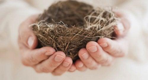Das Empty-Nest-Syndrom: wenn Einsamkeit das Heim füllt
