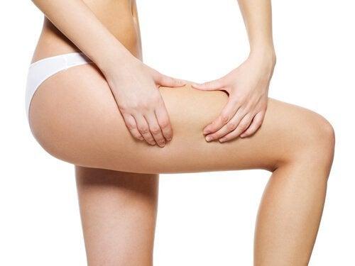 Mit Avocadokern gegen Cellulite kämpfen