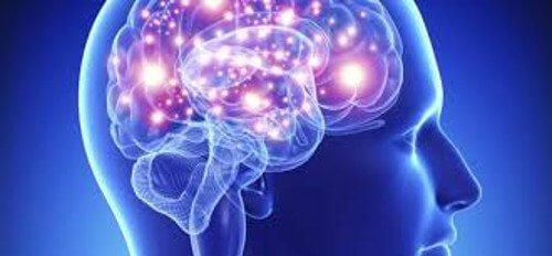 Gehirn und Bluttest für Depression