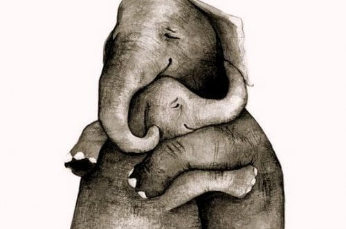 liebe-mutter-kind-elefant