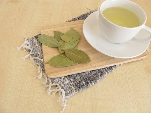 Lorbeer: ein Tee gegen Angstzustände