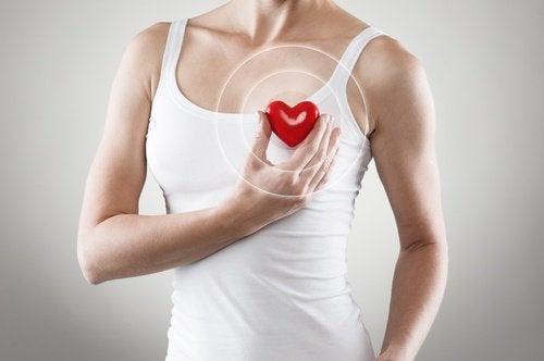Lorbeer zum Schutz deines Herzes