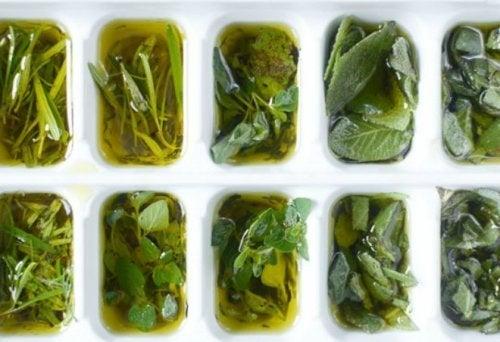 frische-kraeuter-mit-olivenoel