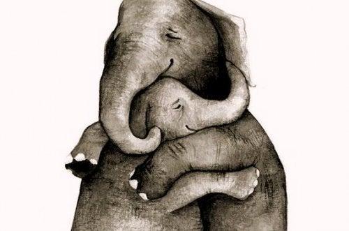 Gutes soll dich finden, dich umarmen und bei dir bleiben