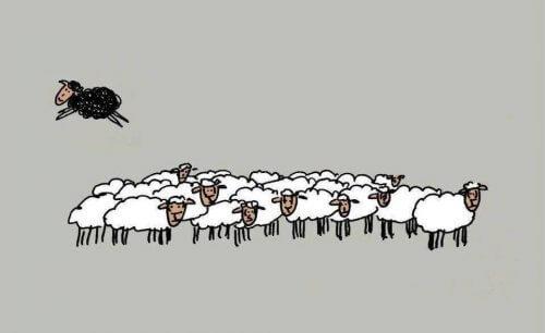 4 Gründe, warum es gar nicht schlecht ist, das schwarze Schaf zu sein