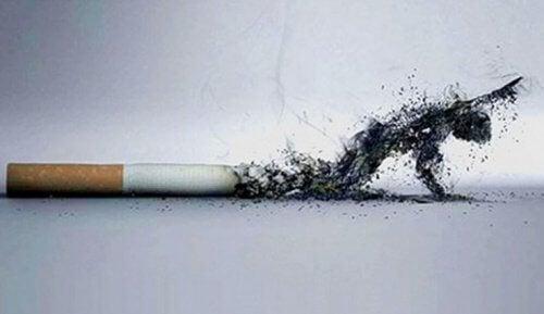 5 Gründe, um das Rauchen aufzugeben für ein besseres Aussehen