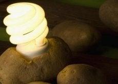 kartoffel-licht
