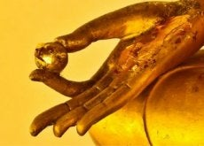 goldene-hand-tibetanische-uebungen