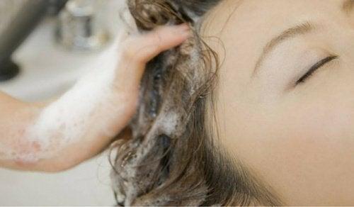 Wusstest du, dass du dir die Haare das ganze Leben lang falsch gewaschen hast?