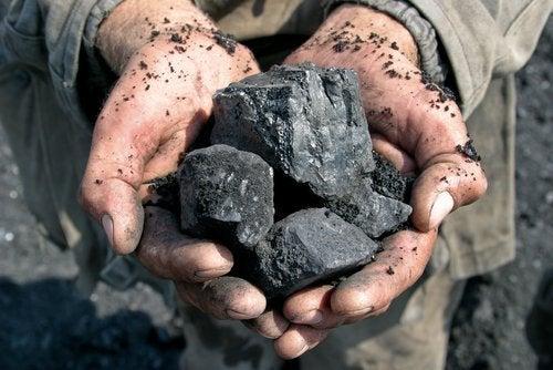 Kohle im Haushalt gegen Schimmel und Feuchtigkeit