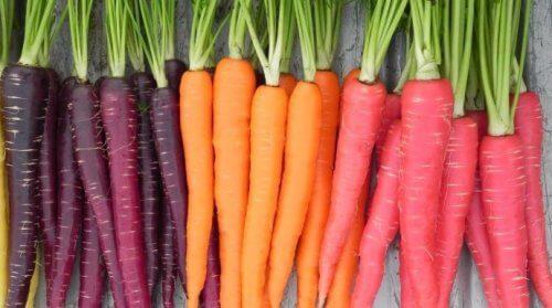 violette-und-orange-karotten