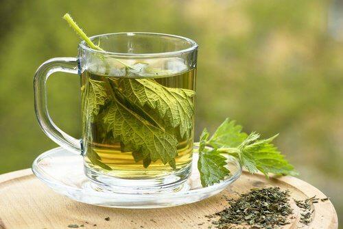 Tee aus Brennessel Menstruatiopnsblutungen
