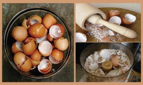 6 interessante Hausmittel mit Eierschalen