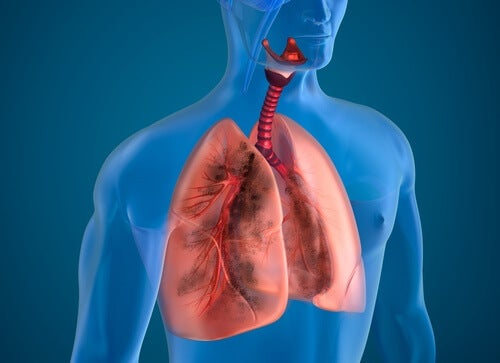Körpergeräusche in den Lungen